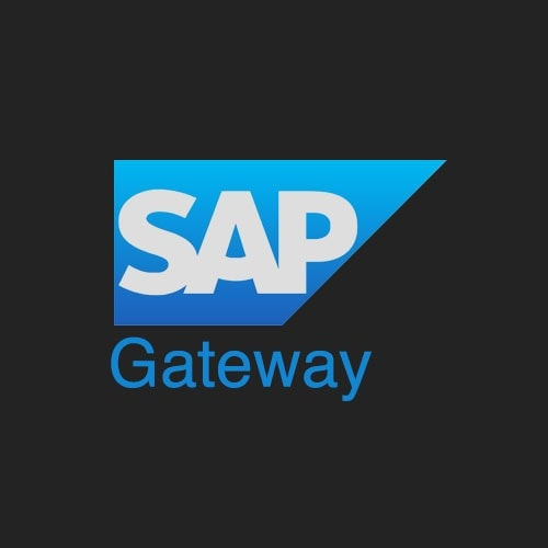 SAP Gateway Icon